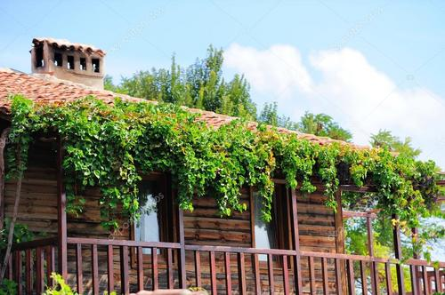 depositphotos_17664649-stock-photo-old-house-covered-with-grapes.jpg